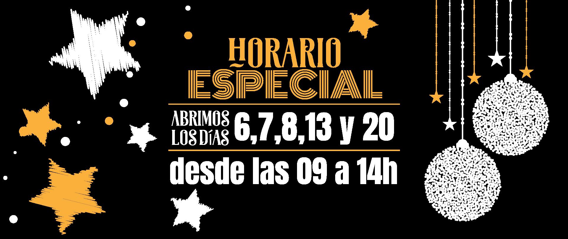 HORARIO ESPECIAL 12-2020